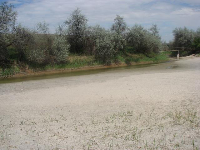 Уровень воды на детском пляже г. Армянске